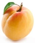 apricot fresh